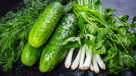 Fresh organic homegrown herbs and leaf vegetables background 免版税图像