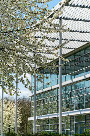 glass office building. green city. 免版税图像