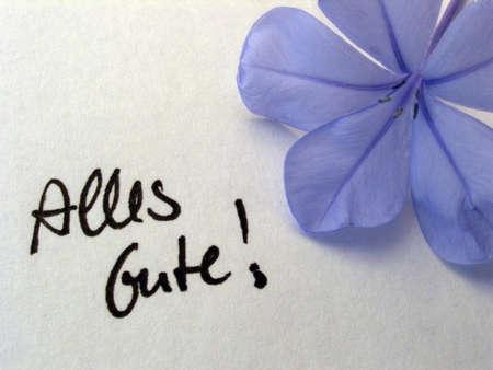 best wishes: best wishes