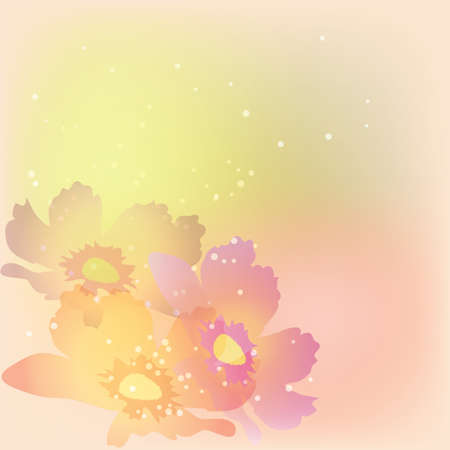 delicate: Colorful delicate flowers background Illustration