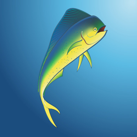 Mahi Mahi onderwater