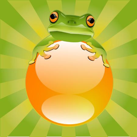 Green Tree Frog Illustration