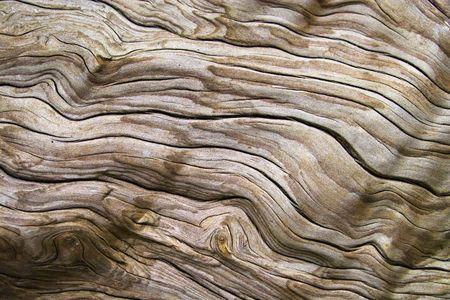 drifts: Driftwood
