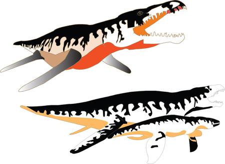 nimble:  liopleurodon collection - vector