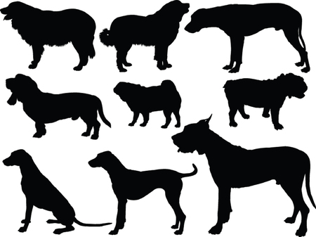 dogs collection - vector Illustration