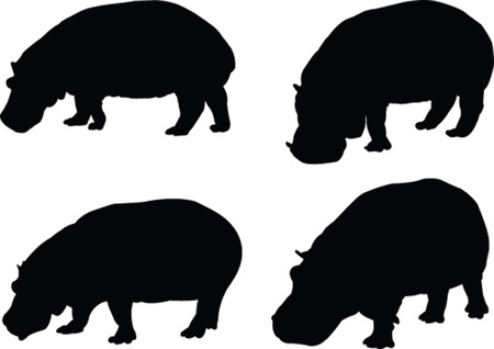 hippo collection - vector Vector