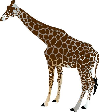 girafe: giraffe silhouette