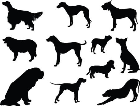 hunting dog: dog collection silhouette