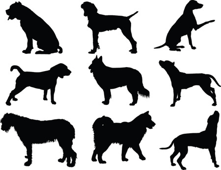 dog collection - vector