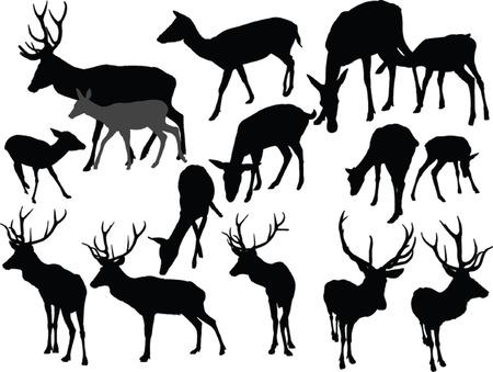 사슴 컬렉션 일러스트