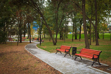 Park alley with benches in Donetsk, recreation area in early autumn shot