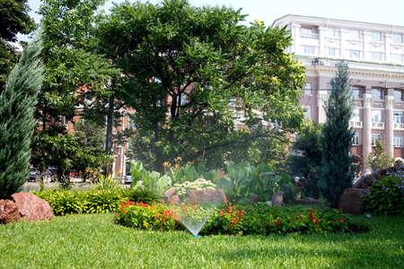 irrigation of flower beds, park infrastructure, grass, flowers, drop, droplet