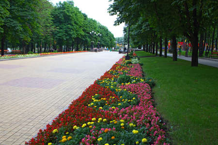 Park alley with flower bed along in the public garden, wide pavement, Park infrastructure, Donetsk Stock Photo