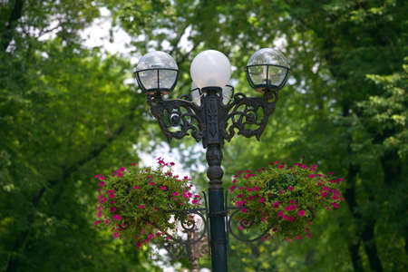 Street lamps placed on park alley, Donetsk municipal park zone, elements of Park infrastructure, iron lamp post with flower pot, park