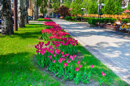 Park zone with flower beds and children's playground in the city of Donetsk, elements of urban infrastructure, accomplishment of territory