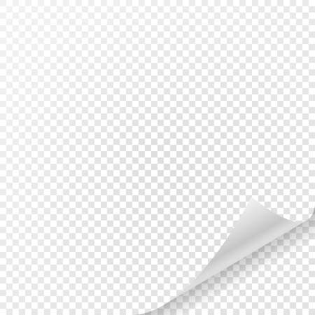 rolled: White sheet of paper with curved corner and with shadow on transparent background.