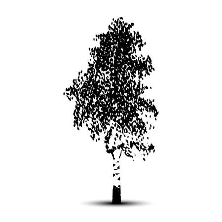 Silhouette detached tree birch with leaves on a white background Illustration