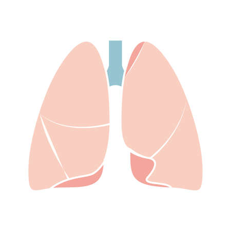 Flat modern design icon lungs. Vector eps10.