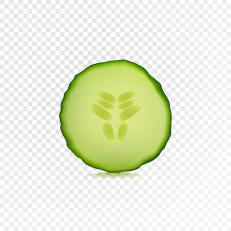 Tranche de concombre frais isolé sur fond transparent. Illustration réaliste de vecteur