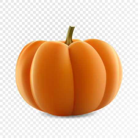 Realistic vector juicy ripe pumpkin isolated on transparency grid background Ilustrace