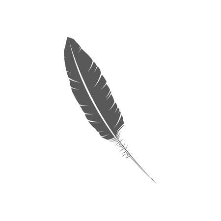 Feather vector icon. Gray isolated
