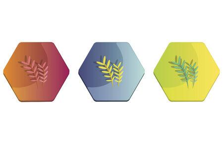 Illustration set of a fern Фото со стока - 30974638