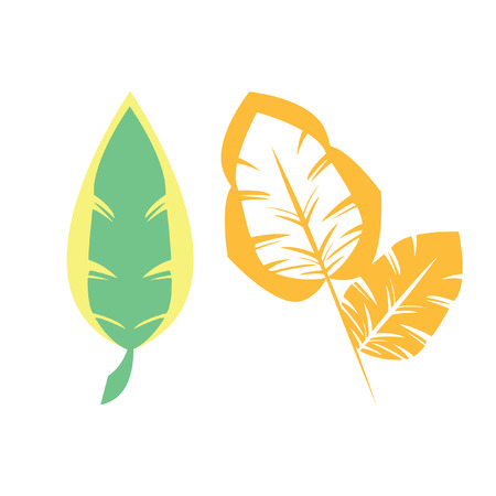 Illustration of leaves 向量圖像