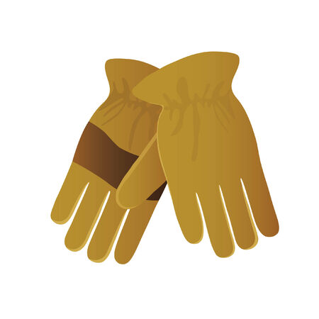 Illustration of a pair of gloves