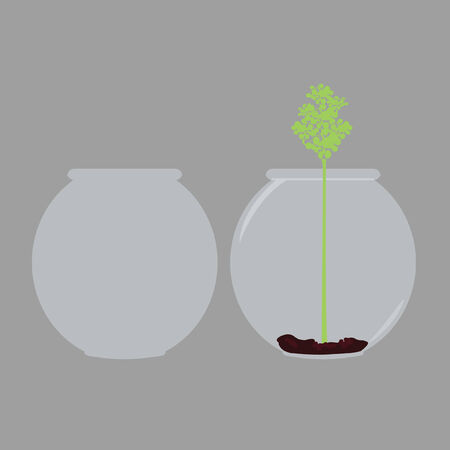 empty bowl: One empty bowl beside bowl with a plant in it Illustration