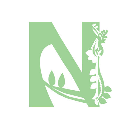 Illustration of letter N Vector