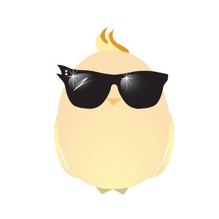 chick: A chick wearing sunglasses