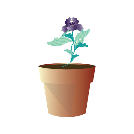 Illustration of a flower in a pot