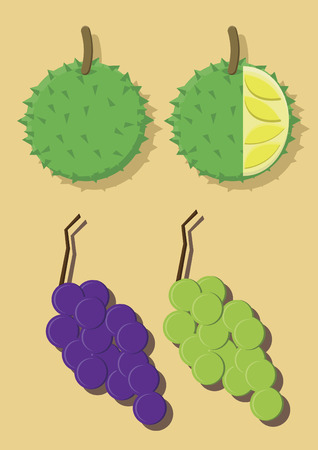 Vector of durian and grapes Çizim
