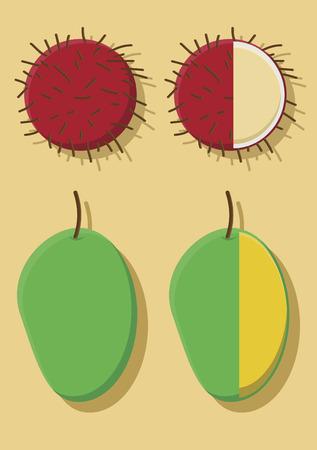 Vector of rambutans and mangoes