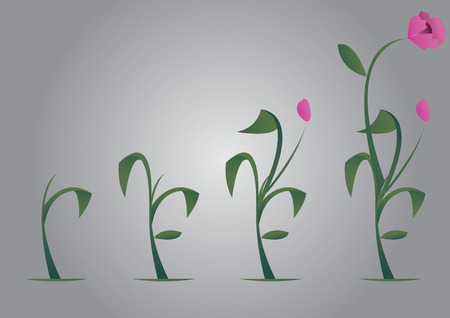 Vector of a flower growing