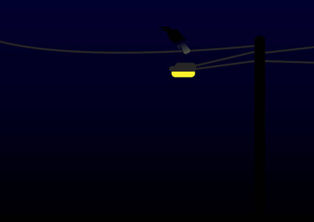 Vector of street lamp