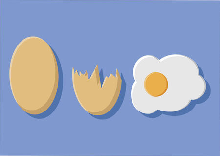 Vector of egg and egg shells