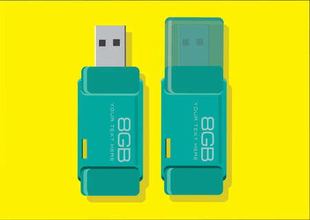 storage device: Vector of usb flash drive