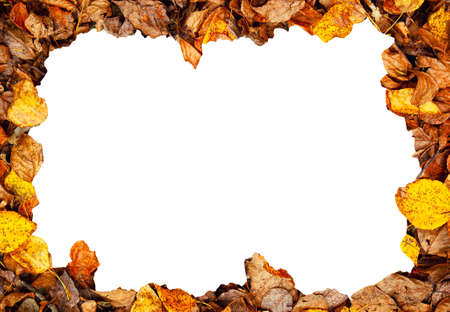 frame of an autumn leaves Stock Photo