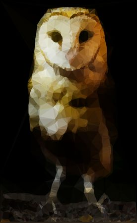 Abstract barn owl polygonal vector illustration on black background