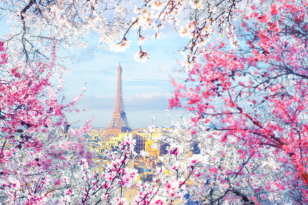 Aerial view of Paris cityscape with Eiffel tower with a frame of blossoming trees at sunset. Vintage colored picture. Business, Love and travel concept