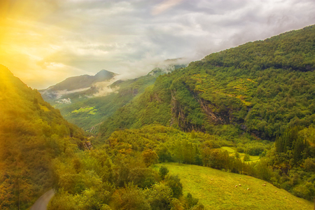 beautiful autumn Norway landscape. mountains and meadow with sheeps. Travel and adventure Zdjęcie Seryjne