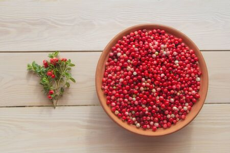 Fresh ripe  lingonberry (cowberry , partridgeberry, foxberry) in clay bowl on rustic wooden table top view Фото со стока