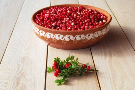 Fresh ripe  lingonberry (cowberry , partridgeberry, foxberry) in clay bowl on rustic wooden table top view Zdjęcie Seryjne