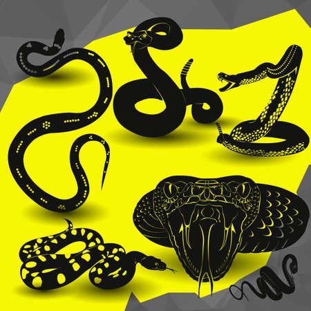 Cobra, Viper Rattlesnake icon vector illustration