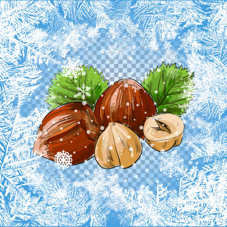 Set of vector icons of nuts - hazelnuts, brazil nuts, peanuts, pistachio and ground nuts isolated on white