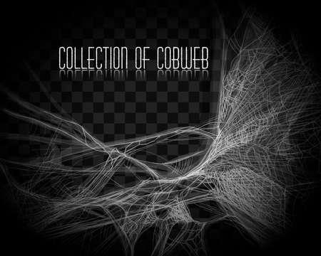 Verzameling van spinnenweb, geïsoleerd op zwarte, transparante achtergrond. Spinnenweb voor Halloween-ontwerp. Spinnenwebelementen, spookachtig, eng, horror halloween-decor. Vector Illustratie