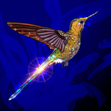 Bee Hummingbird - Mellisuga helenae.Realistic vector illustration of a flying male, the world s smallest bird with colorful iridescent plumage