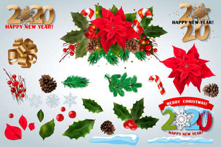 Red poinsettia vector flowers set. 2020 Christmas symbols illustration. Pulcherrima blooming plant on transparent background. Traditional Christmas poinsettia flower with green leaves and red petals. Ilustrace