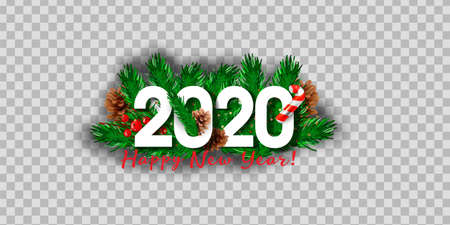 Vector realistic isolated 2020 logo with Christmas tree branches for template decoration and layout covering on the transparent background. Çizim